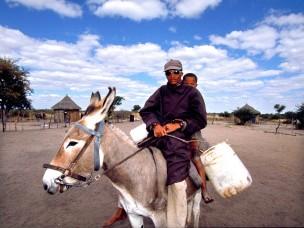 Man op ezel uit de serie: De Barsawa, San, Bushmen in Zuidelijk Afrika, 2000