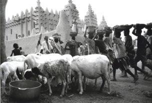 Jongens dragen de geprepareerde leem naar de voet van de Moskee van Djenné, Mali, 2000