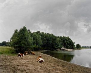 Nederland, de uiterwaarden bij Harwenen, 2005