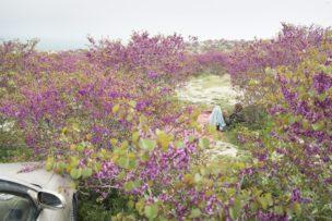 Op vrije dag verblijven in Flower-Hill Park, Gul Ghundi, Afghanistan, 2014